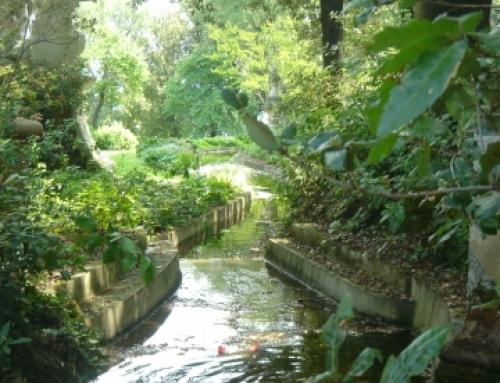 Enjoy Florence's Beautiful Gardens!